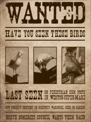 Wanted poster - North Somerset Council