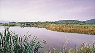 The Ynys Hir nature reserve project will also provide flood protection