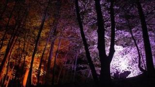 Faskally Woods