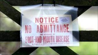 Foot and mouth disease warning sign