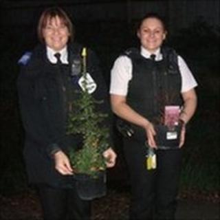 Police officers with plants
