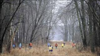 Volunteers and rescuers searching a wooded area for the three boys