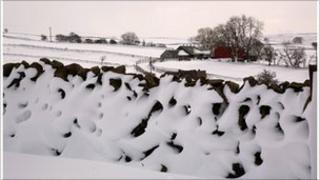 Dry stone wall covered in snow in field