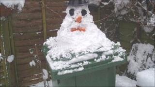 Snowy bin