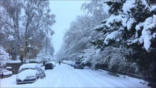 Cluny Avenue (Pic: James O'Brien)
