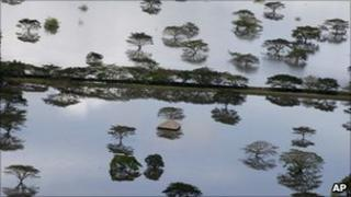 Flooded farmland in southern Colombia