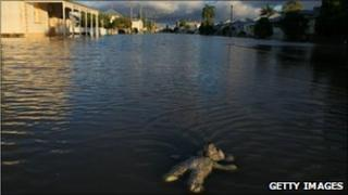 A child's toy floats in floodwaters covering a suburban street in Rockhampton