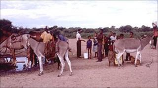 Bushmen in Botswana (file image)