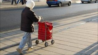 Elderly woman with shopping trolley bag
