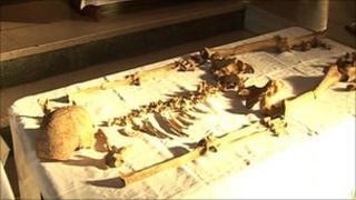 Anglo-Saxon skeleton