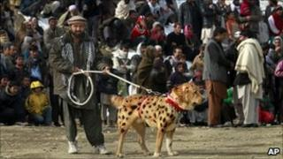 Afghan man with fighting dog, Kabul (18 Feb 2011)
