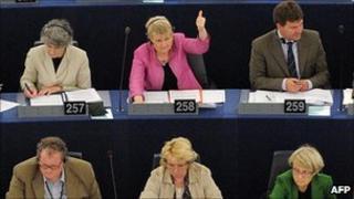 MEPs voting in Strasbourg - file pic