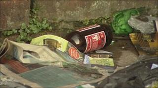 Discarded beer bottle