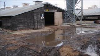 Moy Park Ltd chicken farm, Sibsey