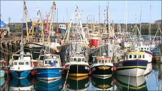 Fishing boats in Newlyn. Pic: Helen Cook
