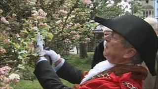 Glastonbury town mayor cuts sprig of Holy Thorn