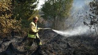 Fire fighter sprays grass fire