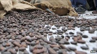 Cocoa beans in Abidjan, Ivory Coast
