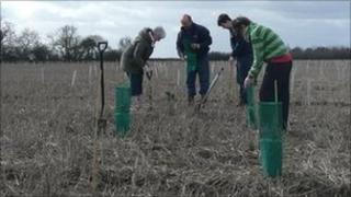 Tree planting at Monks Wood near Nettleham