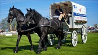 Horsedrawn replica WWI ambulance