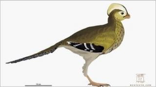 Artist's impression of a new species of dinosaur found in Sussex