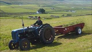 Farmer in hay meadow
