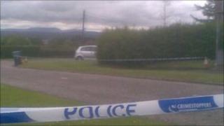 Hillside Road in Craigiehall Pic: Brian Innes