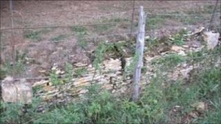 An example of the damaged railings and ha-ha at Westonbirt Arboretum