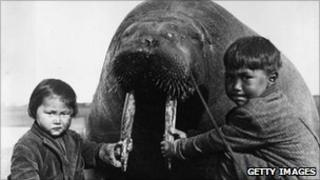 circa 1930: Two Inuit children at Point Barrow, Alaska, holding the tusks of a large walrus, probably killed for food.
