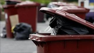 Rubbish bins full and waiting for collection