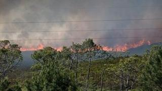 The fire at Upton Heath