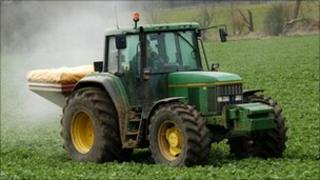 Tractor spreads fertilizer on a crop of sugar beet