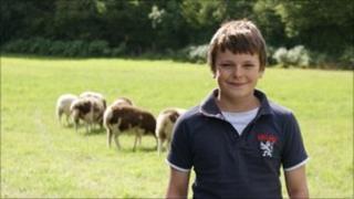 Tobie Shuker and sheep