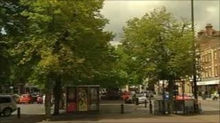 Trees in Salisbury's Market Place