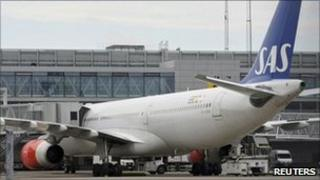 An SAS Airbus 330 plane is parked at a gate at Arlanda airport in Sweden on Tuesday, after a mouse was found on board