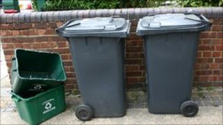 recycling and wheelie bins