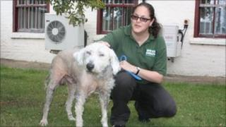 Floyd with Wood Green staff member