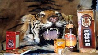 A stuffed tiger head and products made from tiger products seized by Operation Charm