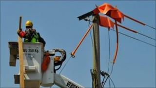 A wooden perch being installed on a pylon at Longleat Safari Park