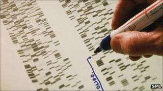 DNA sequence