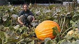 Johnny Crickmore and a pumpkin