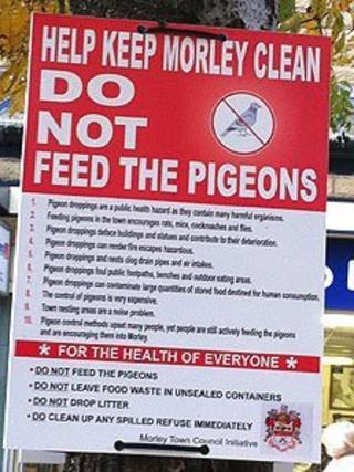 'Do not feed the pigeons' sign