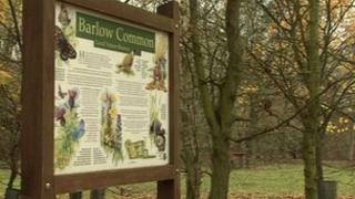 Barlow Common