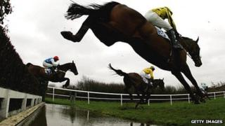 Beginners' Steeple Chase at Leicester Racecourse