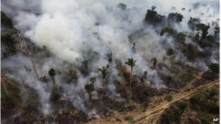 Forest being illegally burned in Brazil (September 2009)