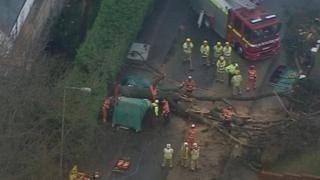 Collapsed tree in Tunbridge Wells