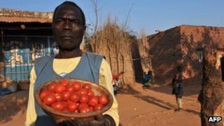 Malawi street vendor selling tomatoes (archive shot)