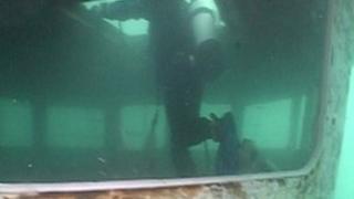 Scylla diver