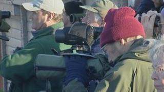 Twitchers in Hampshire
