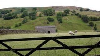 Generic Yorkshire Dales scene